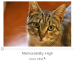 neural networks images