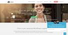 Cinch WordPress Support Service