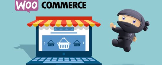 wordpress how to build a store