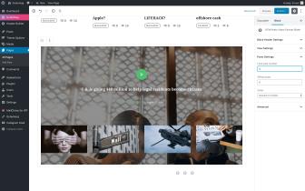 Gutenberg - STM Posts Video Slider
