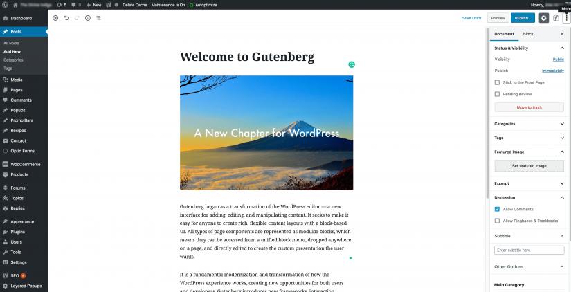 gutenberg introduction (1)